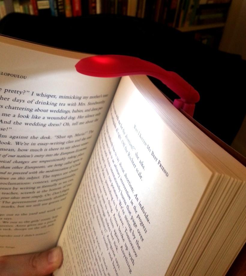 Tiny Book Light 2